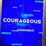 O herói é corajoso (Lições da Nasa – Post 6/10)